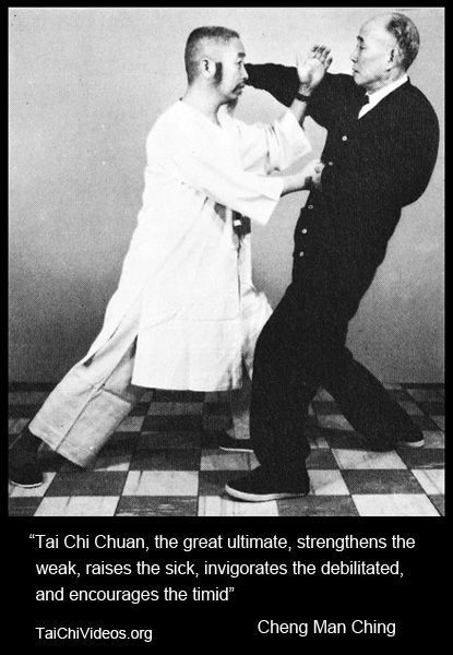 Tai Chi:  the great ultimate