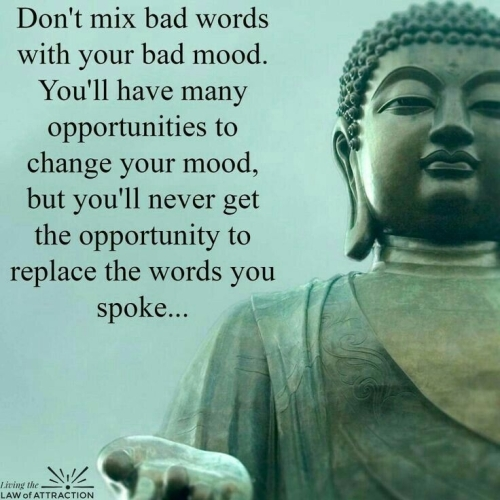Quote: Don't mix bad words with your bad mood. (BUDDHA)