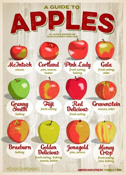 Cookbook: A guide to Apples